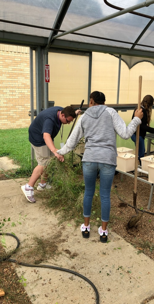 Ms. Neal's Landscape & Turf class are pulling weeds and cleaning the greenhouse to prepare for upcoming projects!